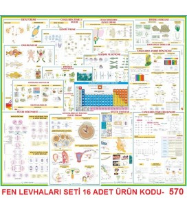FEN LEVHALARI SETİ 16 ADET 70X100 EBAT